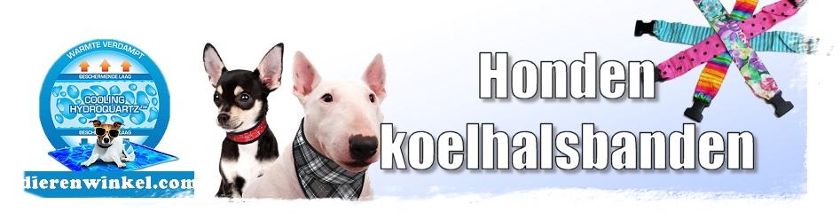 Hondekoelhalsband, voor een coole hond!